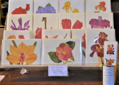 Post Cards, Greeting Cards & Notebooks
